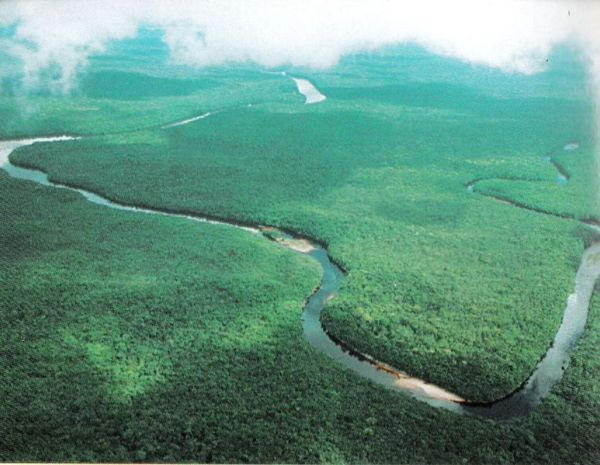 Orinoco river. Photo: Creative Commons.