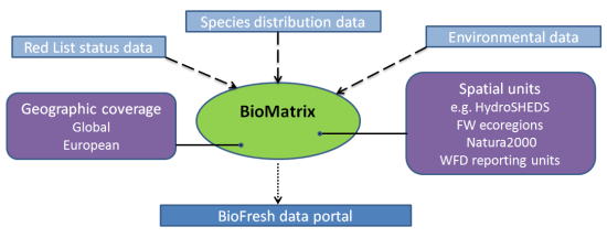 Conceptual overview of the BioMatrix database