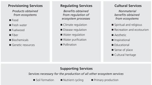 MEA categories of ecosystem services