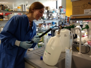 Katja Lehmann in the lab at the Centre for Ecology and Hydrology.