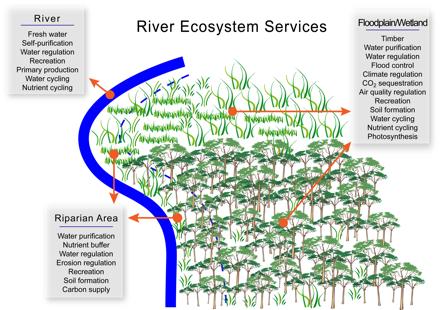 Harrison, P.A., Gary W. Luck, G.A., Feld, C.K & M. T. Sykes (2010) Assessment of Ecosystem Services. In:  Settele, J., Penev. P.,  Georgiev.T.,  Grabaum, R., Grobelnik, V., Hammen, V.,  Klot.S., Kotarac, M., & IKuhn (Eds): Atlas of Biodiversity Risk. Pensoft, Sofia, pp 8-9.