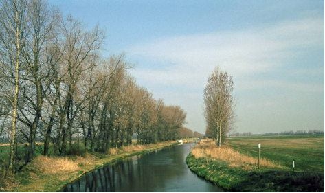 River Nuthe