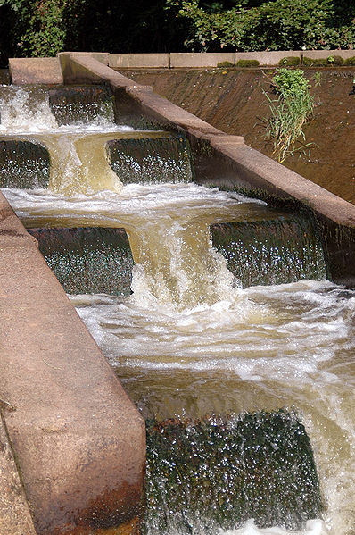 Fish pass on the River Otter in Devon - what is a natural ecosystem here? (Image: Wikipedia)