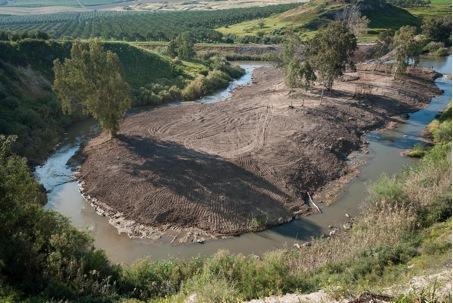 A restored section of the Upper Jordan River (Image: Christian Feld)