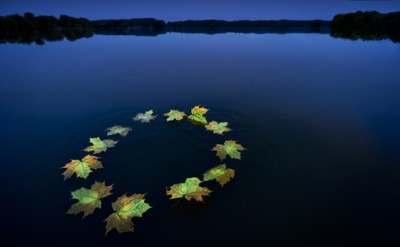 Reflections on water in Europe. Image:  Europa JRC