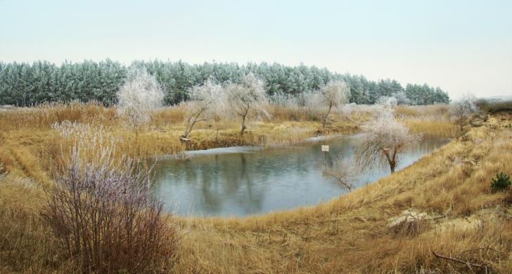 A pond in Swarzynice, Poland.  Image: Mohylek, Wikipedia