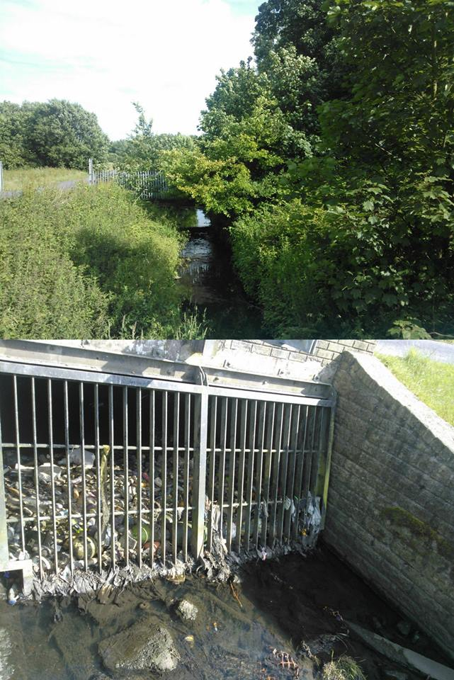 The River Alt in Liverpool, daylighted in 1994, with how it looked before (bottom), and the mature, diverse landscape of today (top).  Image: Adam Broadhead