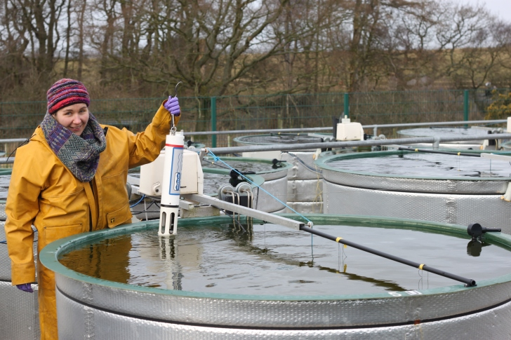 Monitoring the mesocosms: using a datasonde to measure temperature, pH, conductivity and algae biomass.  Image: Heidrun Feuchtmayr