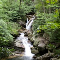 Nutrient pollution can harm stream ecosystems in previous unknown ways