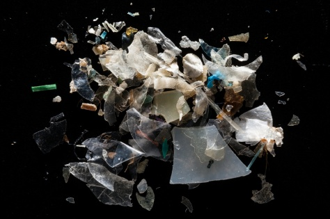 Resultado de imagem para emerging aquatic micro polutents brazil