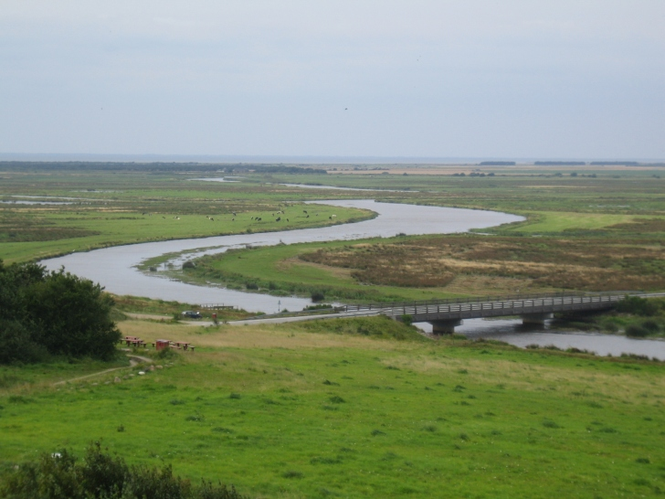 The River Skjern, the largest river in Denmark, and another sampling site.  Image: Wikipedia
