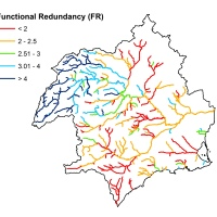 Functional redundancy and how river ecosystems respond to stress
