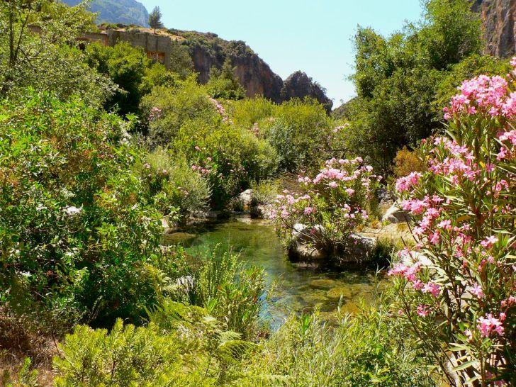 a-river-in-the-rif-region-morocco_nc3bariabonada