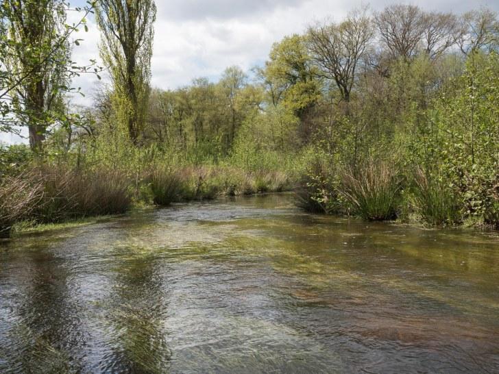 3_restored_river