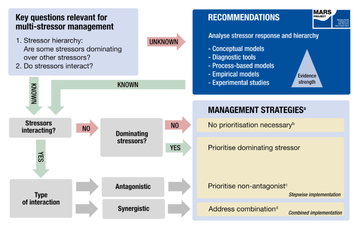 MARS Qs for stressor management