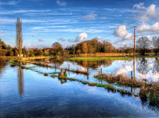 The Freshwater Blog