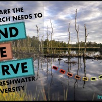 Bending the curve of freshwater biodiversity decline