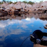 Eavesdropping on underwater worlds: the potential of aquatic ecoacoustics