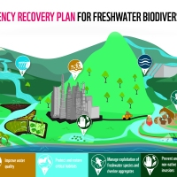 An Emergency Recovery Plan for global freshwater biodiversity