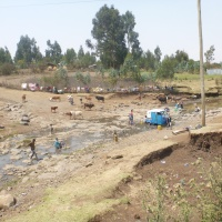 Assessing Ethiopian river water quality: indicator choice matters