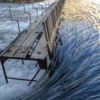 Managing and restoring fragmented Anthropocene rivers